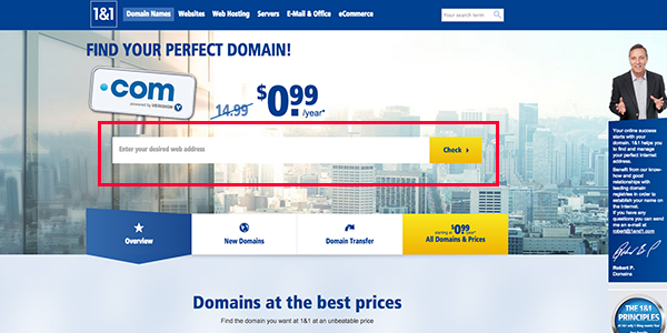 1and1 domain page copy